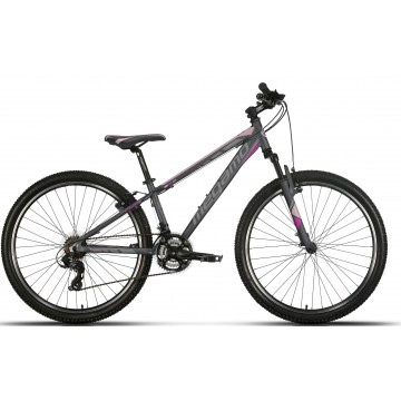 https://biciprecio.com/14474-thickbox/bicicleta-mtb-megamo-fun-lady-2019-275-pulgadas-gris.jpg